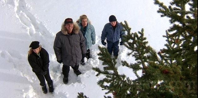 Griwsold-Family-Christmas-Tree